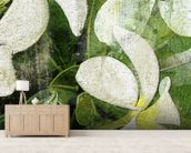 White Plumeria Blossoms wall mural living room preview