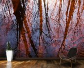Caratunk Wildlife Refuge - Tree Reflections On Water wall mural kitchen preview