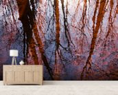 Caratunk Wildlife Refuge - Tree Reflections On Water wall mural living room preview