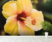 Yellow Hibiscus - Oil Painting wallpaper mural in-room view