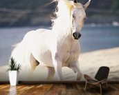 White Horse Running On The Beach mural wallpaper kitchen preview