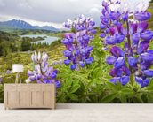 Lupine Flowers Near Lost Lake Seward wall mural living room preview