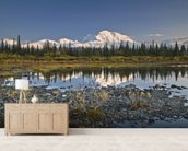 The Alaska Range And Denali's North Face wallpaper mural living room preview