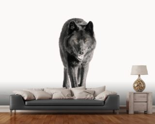 Archipelago Wolf In Black mural wallpaper
