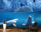 Belugas Underwater wallpaper mural kitchen preview