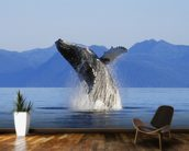 Humpback Whale Breaching wall mural kitchen preview