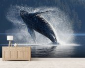 Humpback Whale Breaching - The Inside Passage mural wallpaper living room preview