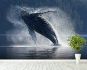Humpback Whale Breaching - The Inside Passage mural wallpaper in-room view