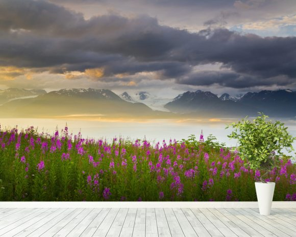 Field Of Fireweed On Hill Overlooking Kachemak Bay wall mural room setting