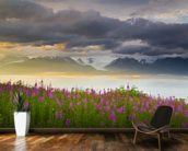 Field Of Fireweed On Hill Overlooking Kachemak Bay wall mural kitchen preview