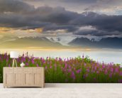 Field Of Fireweed On Hill Overlooking Kachemak Bay wall mural living room preview