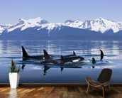 Orca Surface's In Lynn Canal mural wallpaper kitchen preview