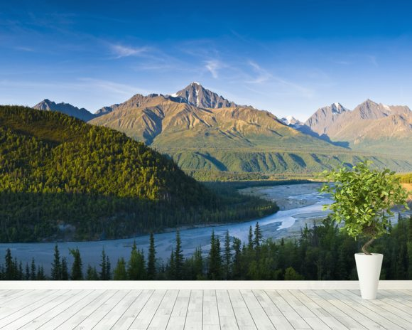 The Matanuska River And Chugach Mountains Below mural wallpaper room setting