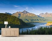 The Matanuska River And Chugach Mountains Below mural wallpaper living room preview