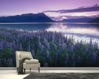 Sunset Turnagain Arm Field Of Lupine wallpaper mural
