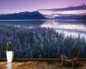 Sunset Turnagain Arm Field Of Lupine wallpaper mural kitchen preview