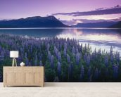 Sunset Turnagain Arm Field Of Lupine wallpaper mural living room preview