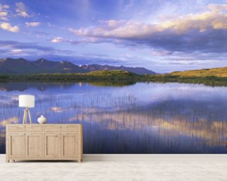 Small Lake Alaska Range Wall Mural Wallpaper Wall Murals