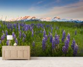 Lupine Along Turnagain Arm wallpaper mural living room preview