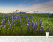 Lupine Along Turnagain Arm wallpaper mural in-room view
