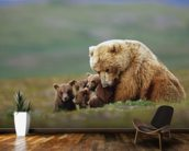 Grizzly Bear Sow with Young Cubs wall mural kitchen preview