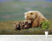 Grizzly Bear Sow with Young Cubs wall mural in-room view