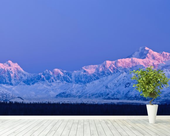 Panoramic View Of Sunrise Over Mt. Mckinley mural wallpaper room setting
