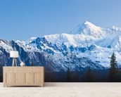 Panoramic View Of Southside Mount Mckinley mural wallpaper living room preview