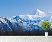 Panoramic View Of Southside Mount Mckinley mural wallpaper in-room view