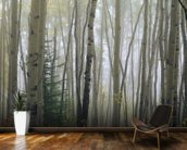 Foggy Aspen Forest Near Ester Interior wall mural kitchen preview