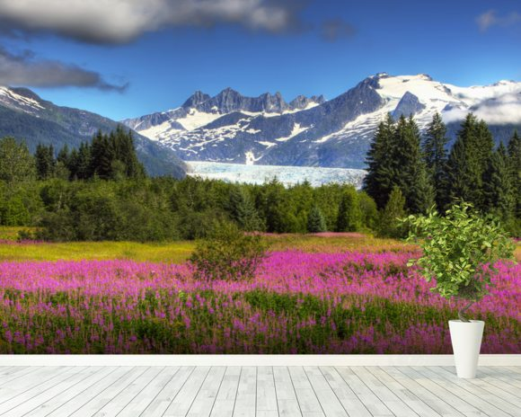 The Mendenhall Glacier with a Field of Fireweed mural wallpaper room setting