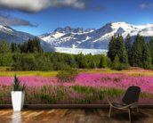 The Mendenhall Glacier with a Field of Fireweed mural wallpaper kitchen preview