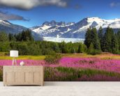 The Mendenhall Glacier with a Field of Fireweed mural wallpaper living room preview
