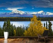 View Of Mt. Sanford and Mt. Drum with Willow Lake mural wallpaper kitchen preview
