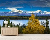 View Of Mt. Sanford and Mt. Drum with Willow Lake mural wallpaper living room preview