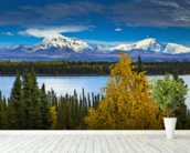 View Of Mt. Sanford and Mt. Drum with Willow Lake mural wallpaper in-room view