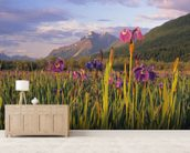 Wild Iris Blooming In Front Of Pioneer Peak wall mural living room preview