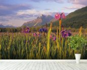 Wild Iris Blooming In Front Of Pioneer Peak wall mural in-room view
