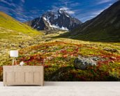 Bold Peak And Colorful Fall Tundraa wallpaper mural living room preview