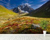Bold Peak And Colorful Fall Tundraa wallpaper mural in-room view