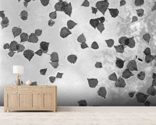 Fall Leaves Laying on Glass Roof Anchorage Alaska Mural Wallpaper Wall Murals Wallpaper