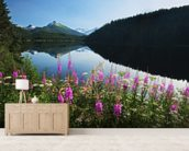 Auke Lake On A Clear Day With Fireweed wallpaper mural living room preview