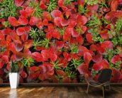 Tundra Plants In Fall Colors mural wallpaper kitchen preview