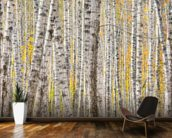 A Poplar Tree Forest In Autumn wall mural kitchen preview