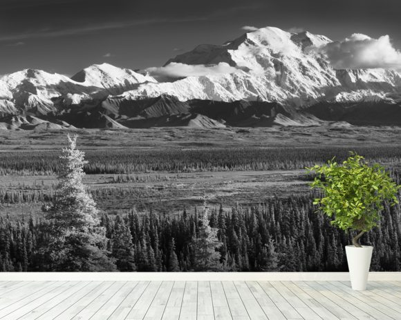 infrared panorama of denali and the alaska range wall mural infrared panorama of denali and. Black Bedroom Furniture Sets. Home Design Ideas
