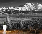 Infrared Panorama Of Denali And The Alaska Range wallpaper mural kitchen preview