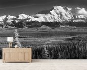 Infrared Panorama Of Denali And The Alaska Range wallpaper mural living room preview