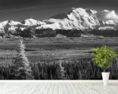 Infrared Panorama Of Denali And The Alaska Range wallpaper mural in-room view