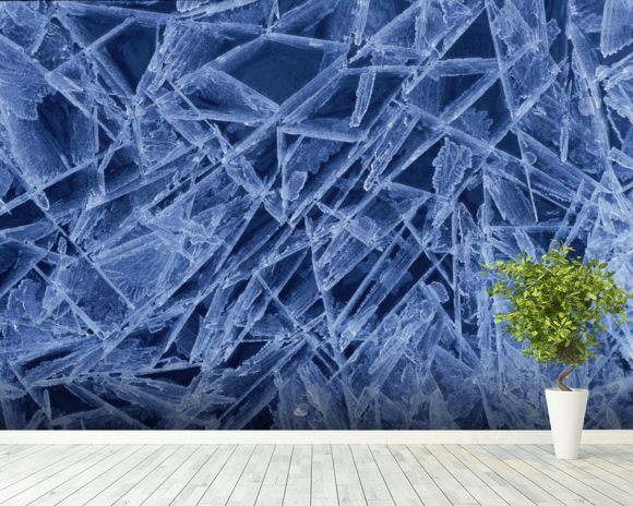 Ice Crystals Formed on Portage River - Alaska wall mural room setting