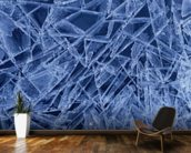 Ice Crystals Formed on Portage River - Alaska wall mural kitchen preview